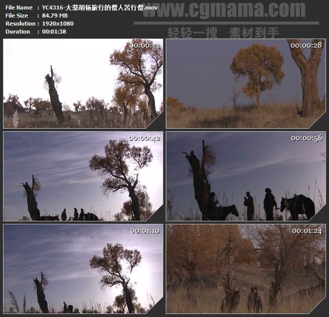 YC4316-大漠胡杨旅行的僧人苦行僧高清实拍视频素材