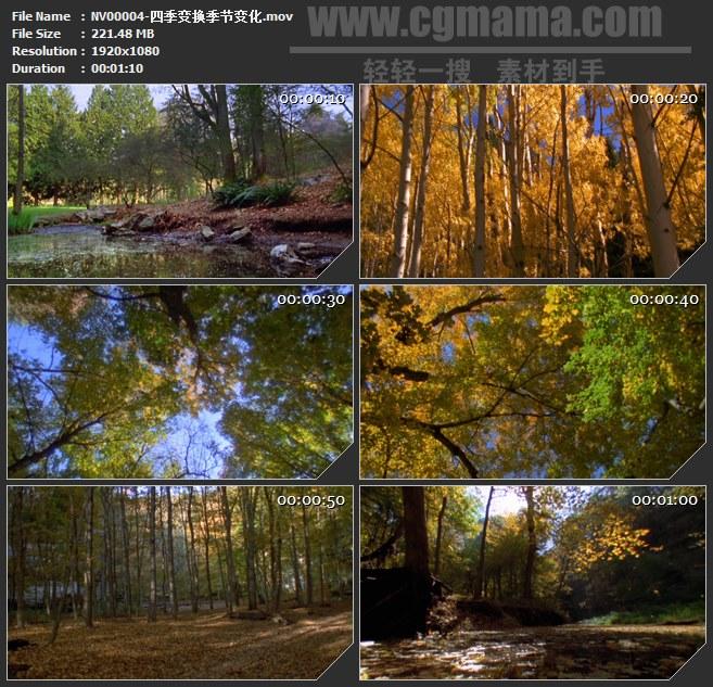 NV00004-四季变换季节变化高清实拍视频素材
