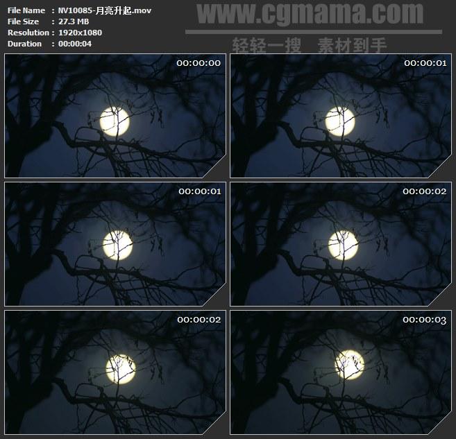 NV10085-月亮升起自然美景风景高清实拍视频素材