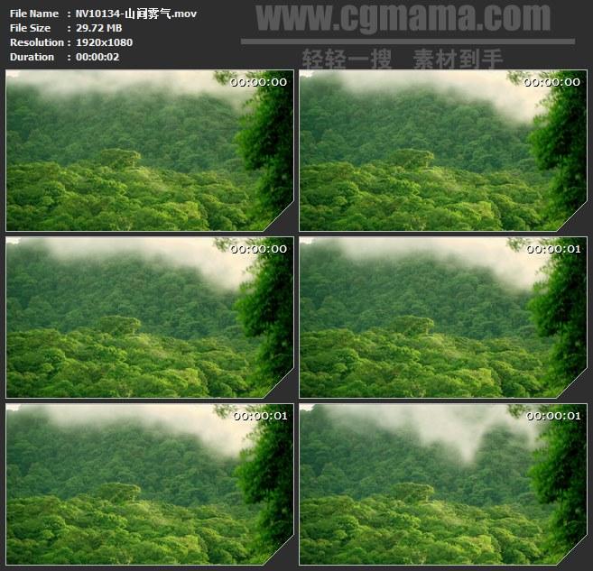 NV10134-山间雾气高清实拍视频素材