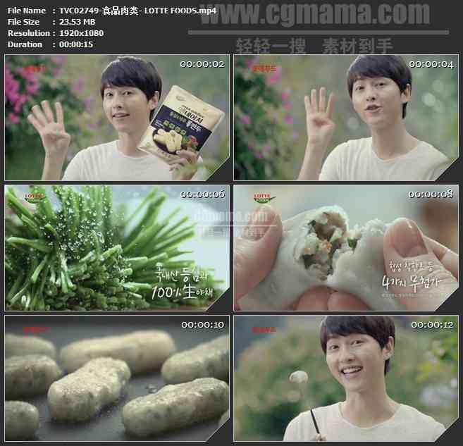 TVC02749-食品肉类- LOTTE FOODS