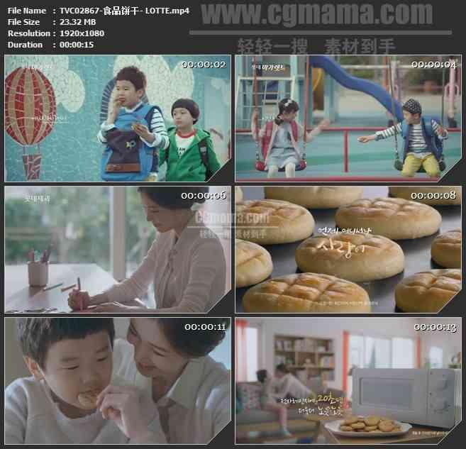 TVC02867-食品饼干- LOTTE