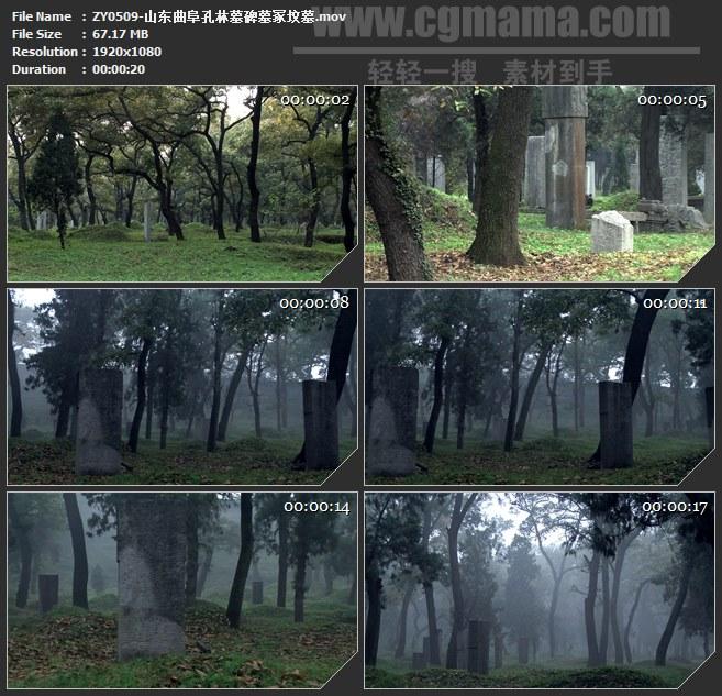 ZY0509-山东曲阜孔林墓碑墓冢坟墓 高清实拍视频素材