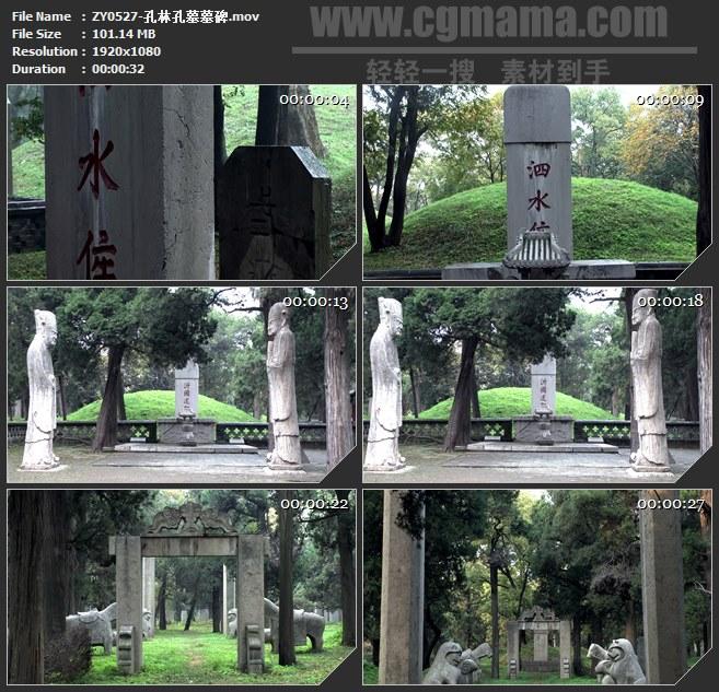 ZY0527-孔林孔墓墓碑 高清实拍视频素材