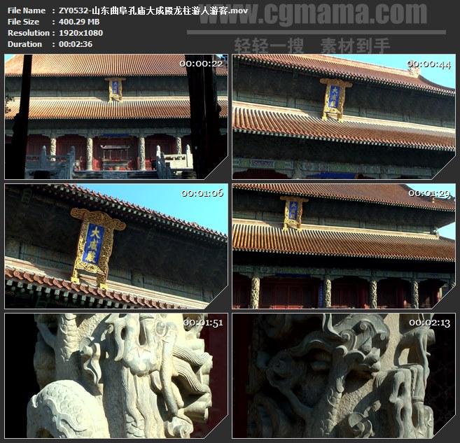 ZY0532-山东曲阜孔庙大成殿龙柱游人游客 高清实拍视频素材
