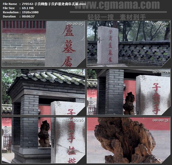 ZY0542-子贡画像子贡庐墓处曲阜孔林 高清实拍视频素材