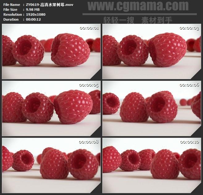 ZY0619-高清水果树莓 高清实拍视频素材