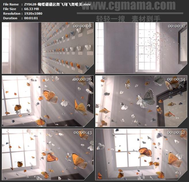 ZY0628-蝴蝶翩翩起舞飞翔飞舞唯美高清LED视频背景素材
