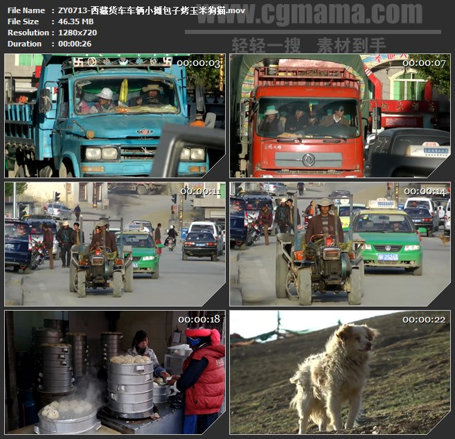 ZY0713-西藏货车车辆小摊包子烤玉米狗猫 高清实拍视频素材