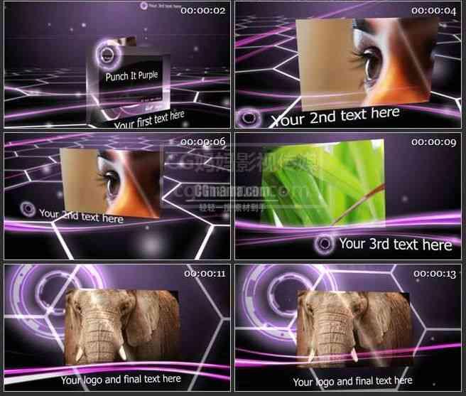 AE0096-紫色 图文展示 高清实拍视频素材
