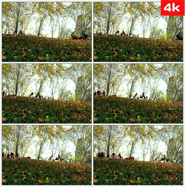 4K0009中央公园行驶马车2 高清实拍视频素材