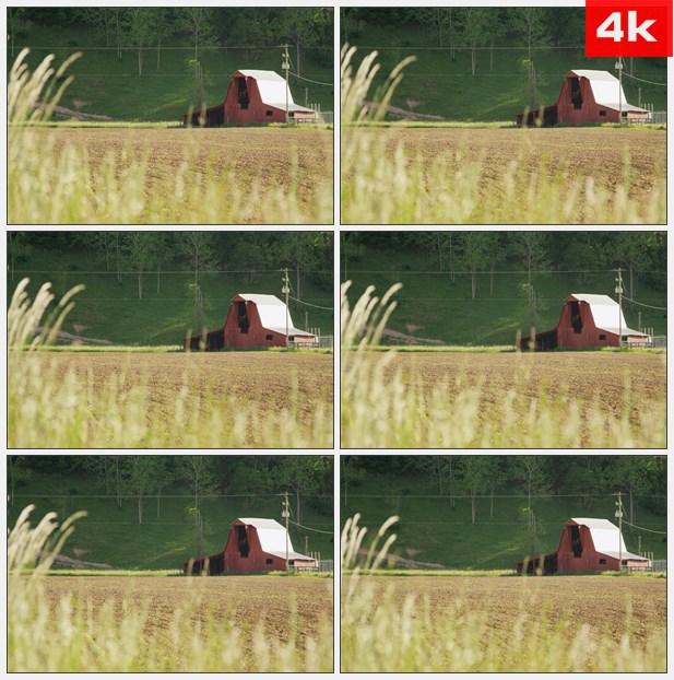 4K0124西弗吉尼亚州谷仓耕种领域 高清实拍视频素材