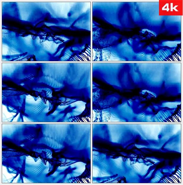 4K0228蠕动的蓝色光线 高清实拍视频素材
