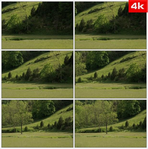 4K0342绿色草地和山坡 高清实拍视频素材