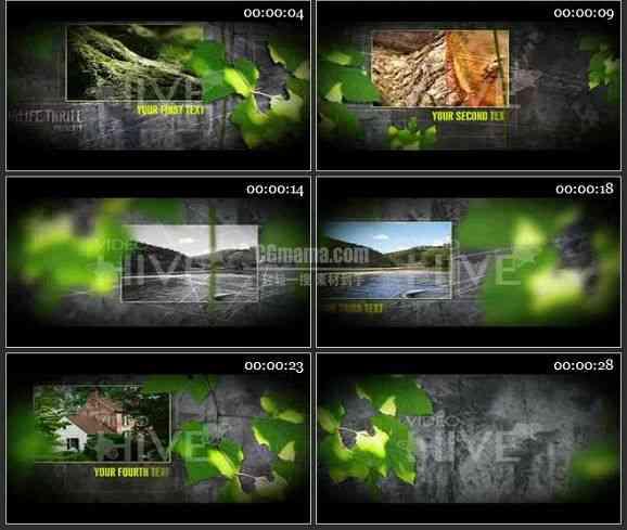 AE0915-植物实景 图文展示
