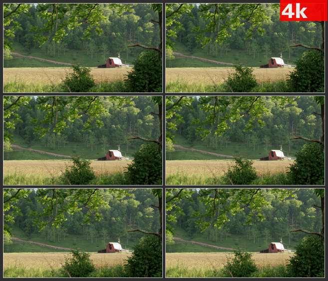 4K0550风景田园农场 高清实拍视频素材
