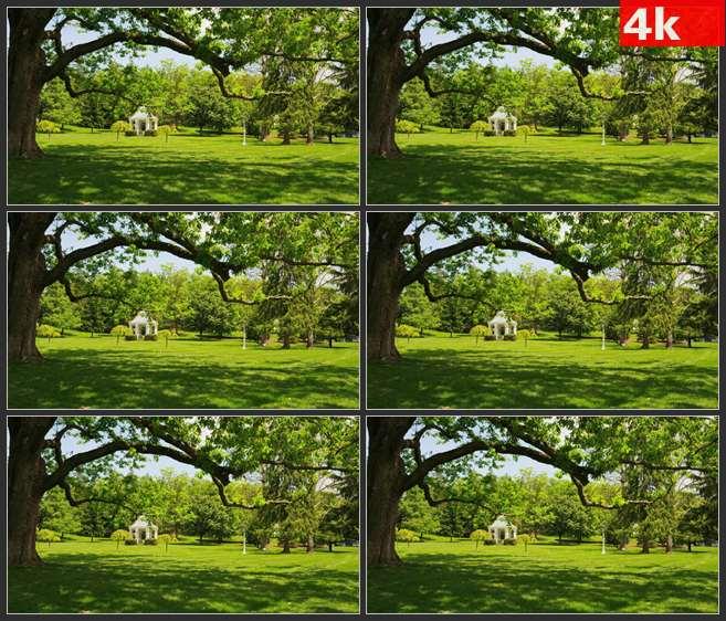 4K0642草坪 树林中的白色亭子 高清实拍视频素材