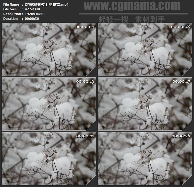 ZY0959树枝上的积雪高清实拍视频素材