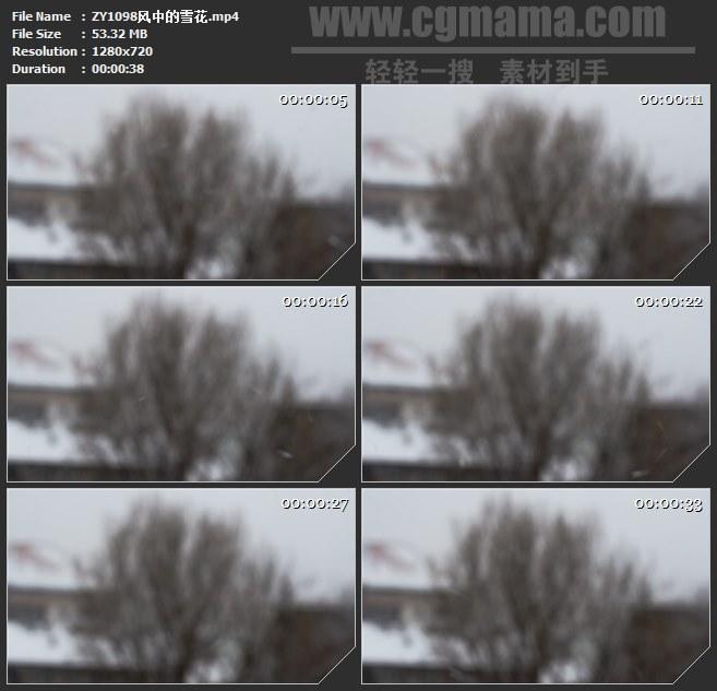ZY1098风中的雪花高清实拍视频素材
