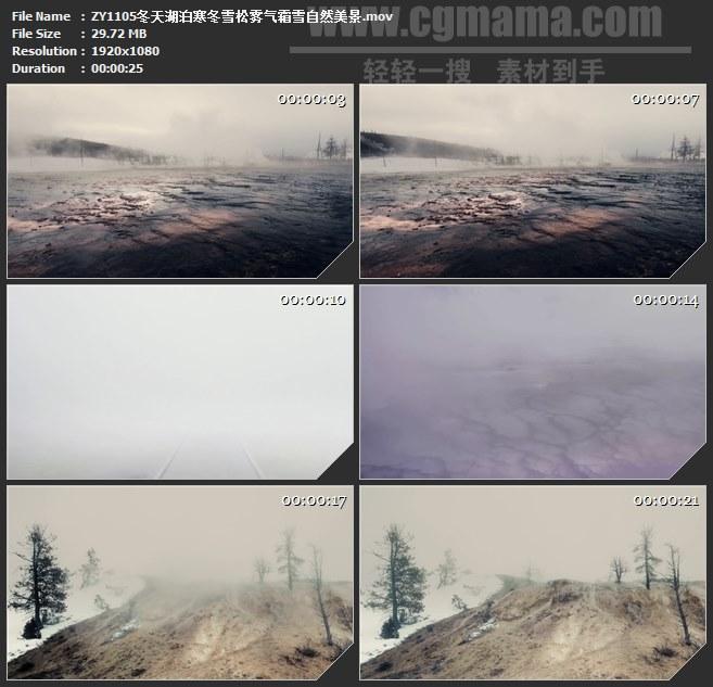 ZY1105冬天湖泊寒冬雪松雾气霜雪自然美景高清实拍视频素材