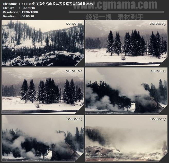 ZY1108冬天寒冬高山松林雪松霜雪自然美景高清实拍视频素材
