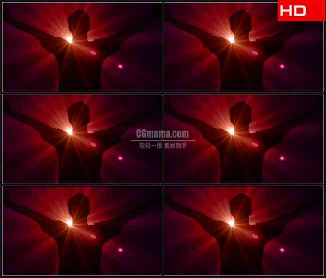 BG0191-红色夜雨崇拜欢呼背影剪影高清LED视频背景素材