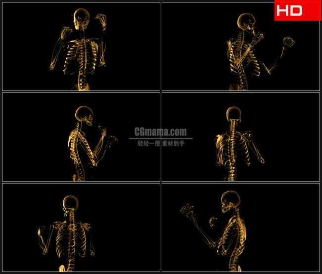 BG0238-三维透明模型旋转体人体骨架高清LED视频背景素材