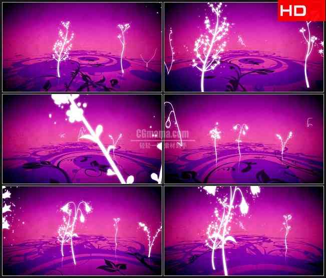BG0338-紫色背景白色荧光花束卷草植物剪影高清LED视频背景素材