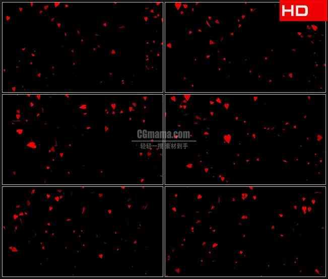 BG0382-红色心形花瓣翻滚飘落高清LED视频背景素材