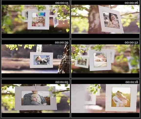 AE0984-照片树 相册