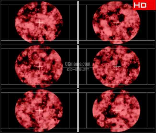 BG0507-病毒微生物显微镜下生物高清LED视频背景素材