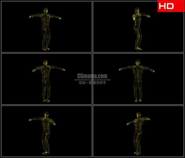 BG0588-人类身体旋转三维动画医学生物科技高清LED视频背景素材