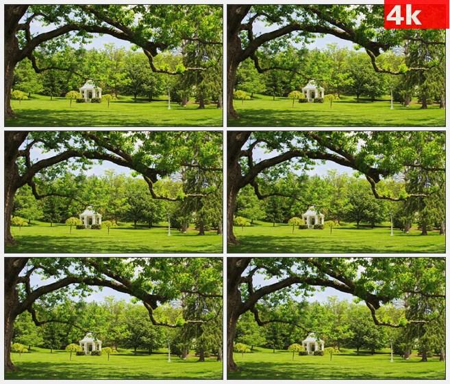 4K0774白色户外亭子草地树木自然田园美景高清实拍视频素材