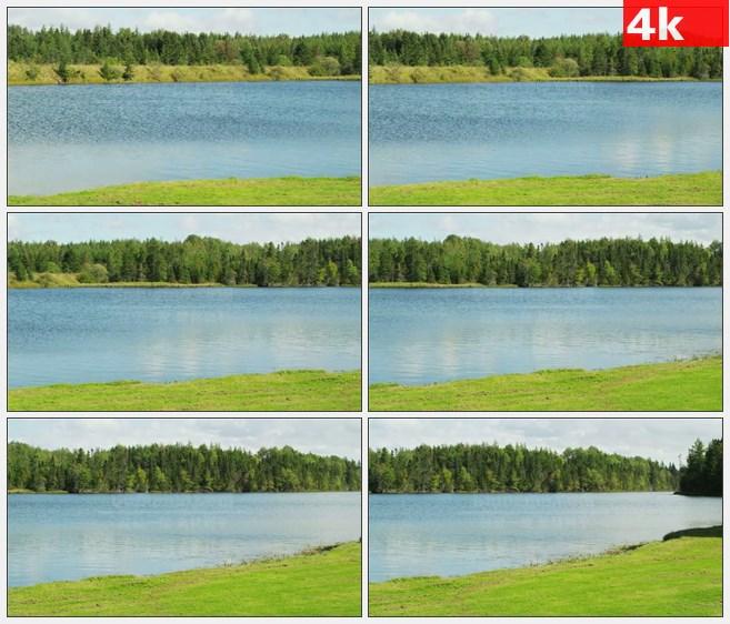 4K0806草地树林河流摇镜头自然美景高清实拍视频素材