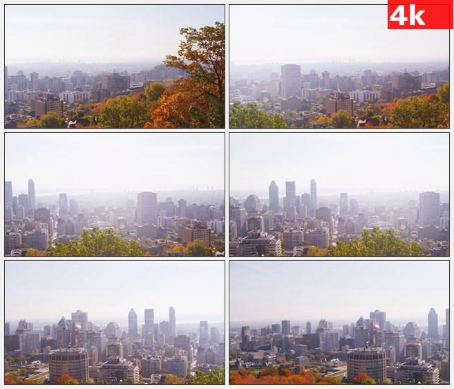 4K0811城市风光一角秋天彩叶树高清实拍视频素材