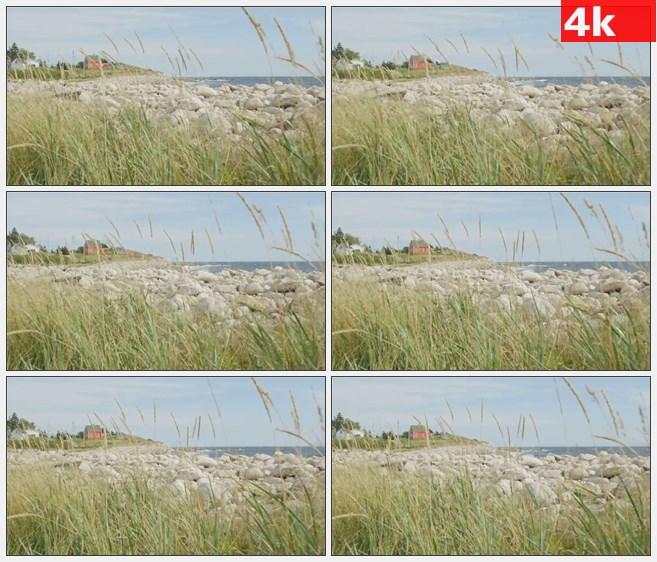 4K0833大海海边的红房子高清实拍视频素材