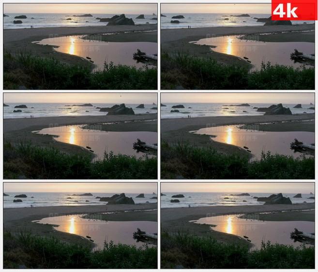 4K0834大海海边日落浅滩海鸥水鸟高清实拍视频素材