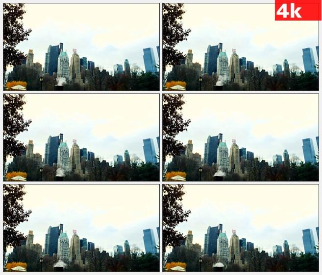 4K0853低角度纽约摩天大楼城市树木秋天美景高清实拍视频素材