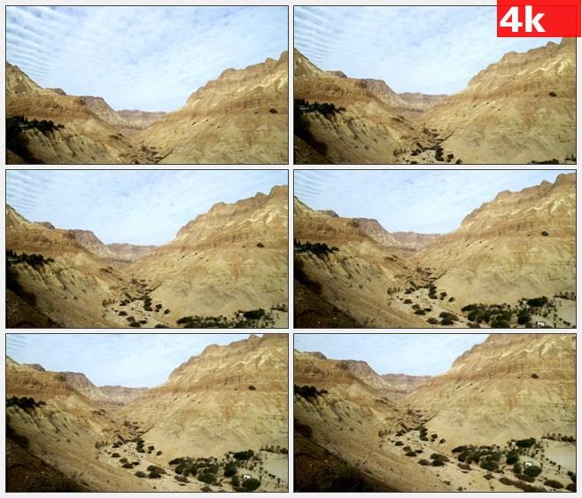 4K0914干旱大峡谷植被高清实拍视频素材
