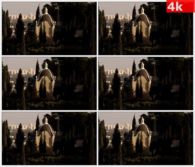 4K0917橄榄树风中摇摆建筑高清实拍视频素材