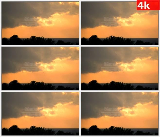 4K1041基韦斯特的金色夕阳棕榈树高清实拍视频素材