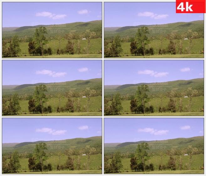 4K1081蓝天白云草原树木远山自然风景高清实拍视频素材