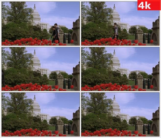 4K1165美国国会大厦行人高清实拍视频素材