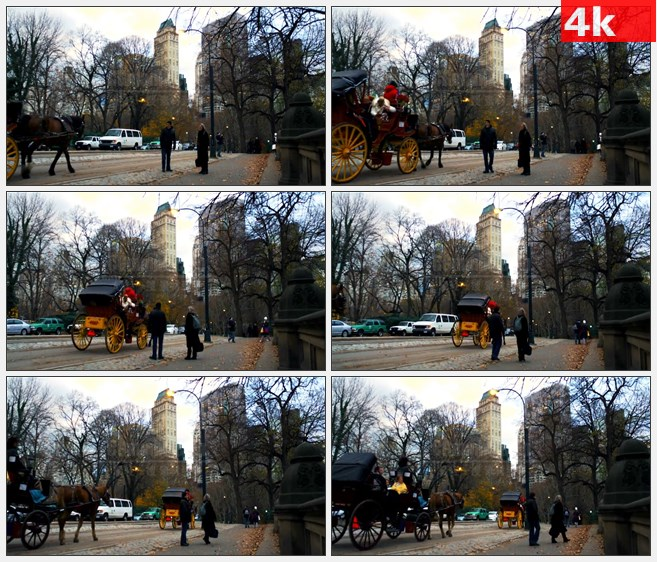 4K1191美国纽约市街道场景人行道马车观光高清实拍视频素材