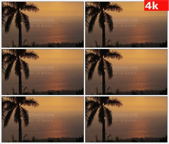 4K1433夕阳橙色天空大海沙滩椰子树风景高清实拍视频素材