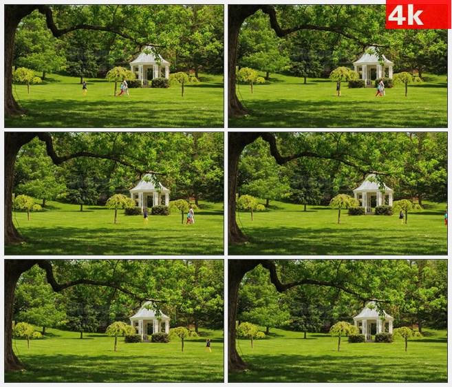 4K1410田园农场小路游客高清实拍视频素材