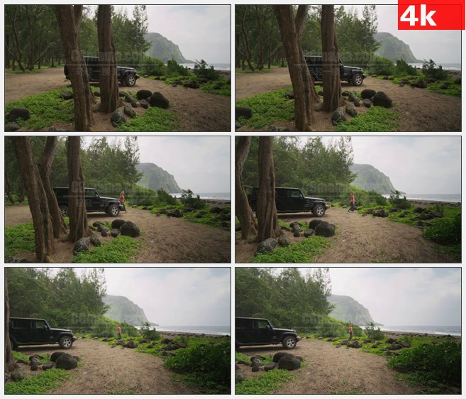 4K1417外国女孩从车上走下面向海边树林高清实拍视频素材