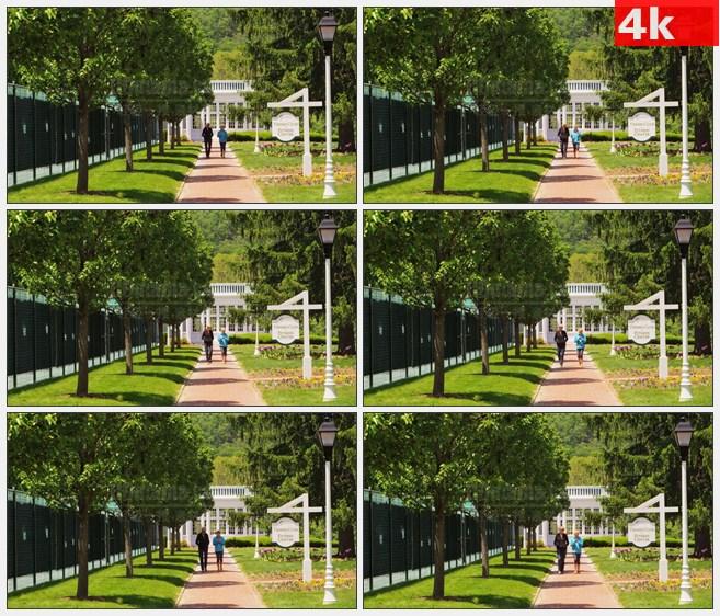 4K1456小镇中心人行道绿色树木草地高清实拍视频素材