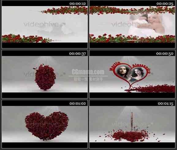 AE1189 唯美玫瑰花瓣效果婚礼片头