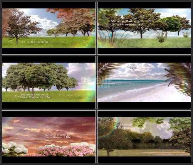 AE2514-甜蜜的美好时光 自然景色 图文展示 婚庆类